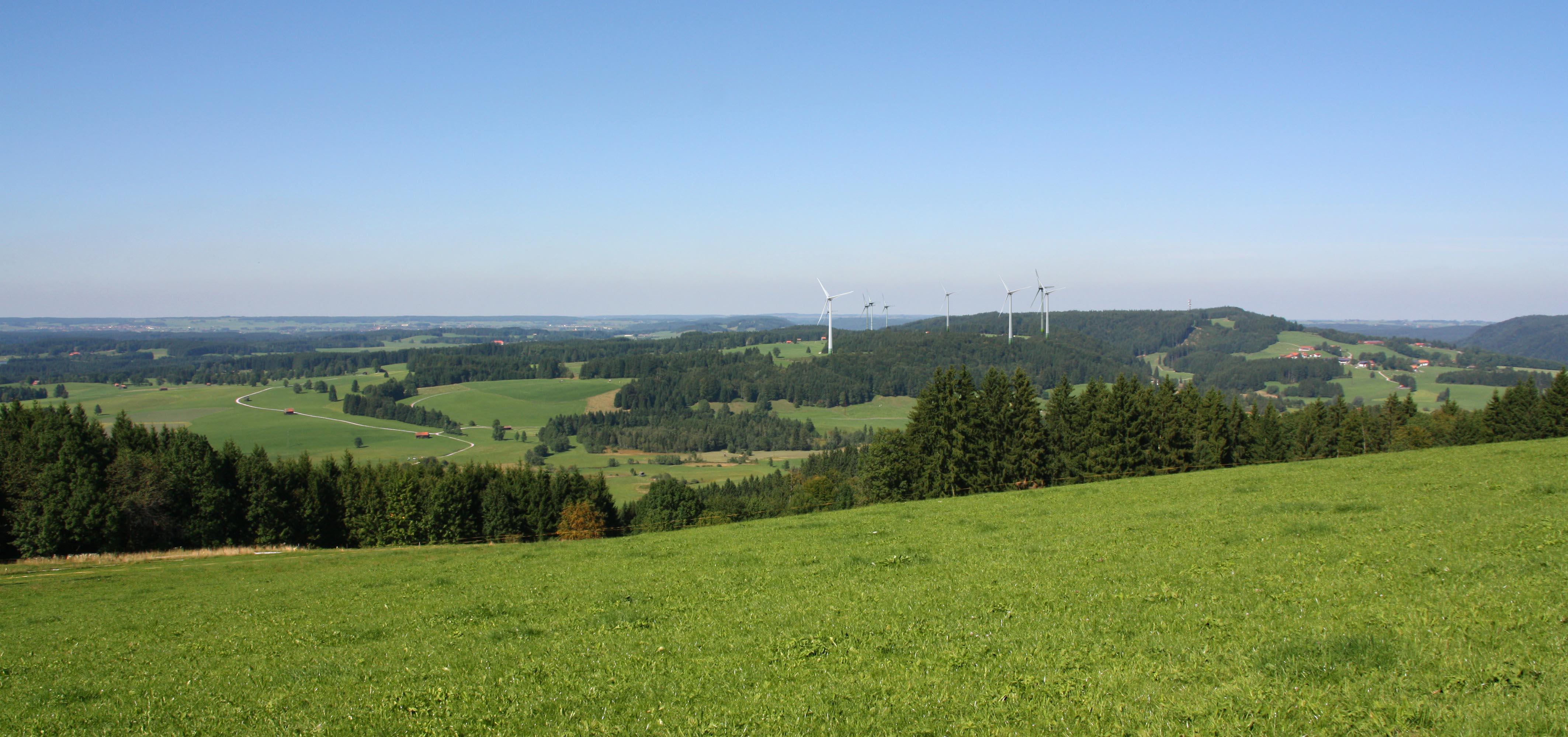 Bergwiesen 150